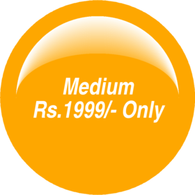 Medium Dynamic Website Package 1999/-